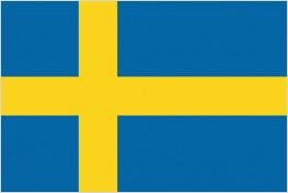 vlag bij cursus zweeds